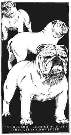 History of Bulldogs